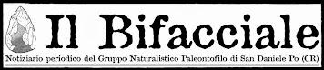 Scarica il notiziario del Gruppo Naturalistico Paleontofilo
