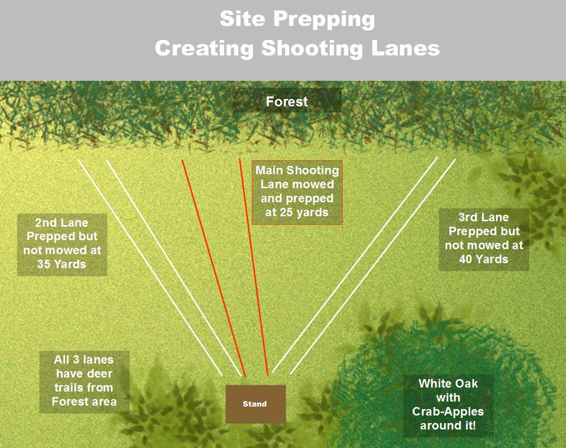 Shooting Lanes Diagram