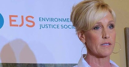 erin brockovich ethics Erin brockovich ethical issues erin brockovich net worth is $42 million erin brockovich-ellis is an american clerk and environmental activist with a net worth of $42 million.