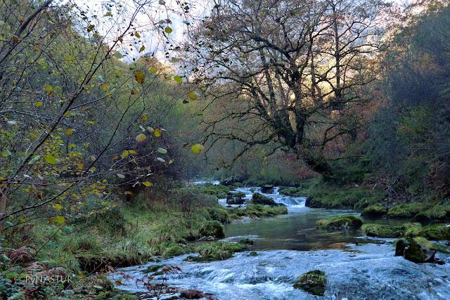 Ruta del Río Casañu - Cabrales - Asturias