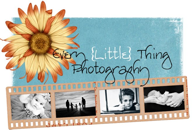 Every Little Thing Photography