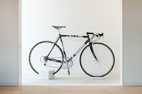 Bicycle stand anaconda