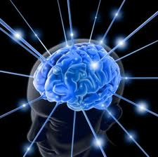 A HUMAN BRAIN IS A MAGNIFICENT TOOL THAT NEEDS DAILY CHALLENGE!