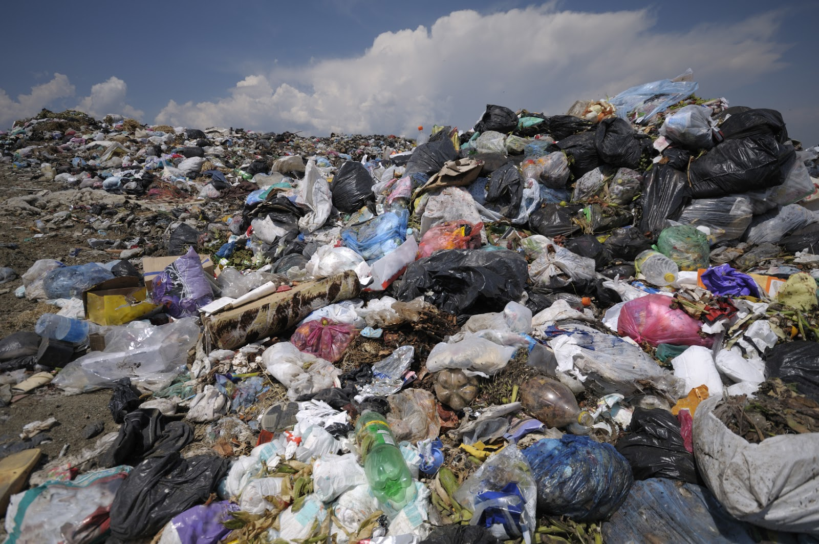 Waste Materials Of Analytical Chemist Determining The Fuel Value Of Waste