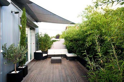 Jard n en una terraza o azotea guia de jardin for Terrazas minimalistas fotos