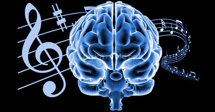 Manfaat Mendengarkan Musik Bagi Kesehatan dan Otak ...