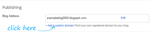 Enter the Custom Domain Name You Have Purchased For Your blog