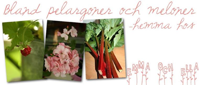 Bland pelargoner & meloner