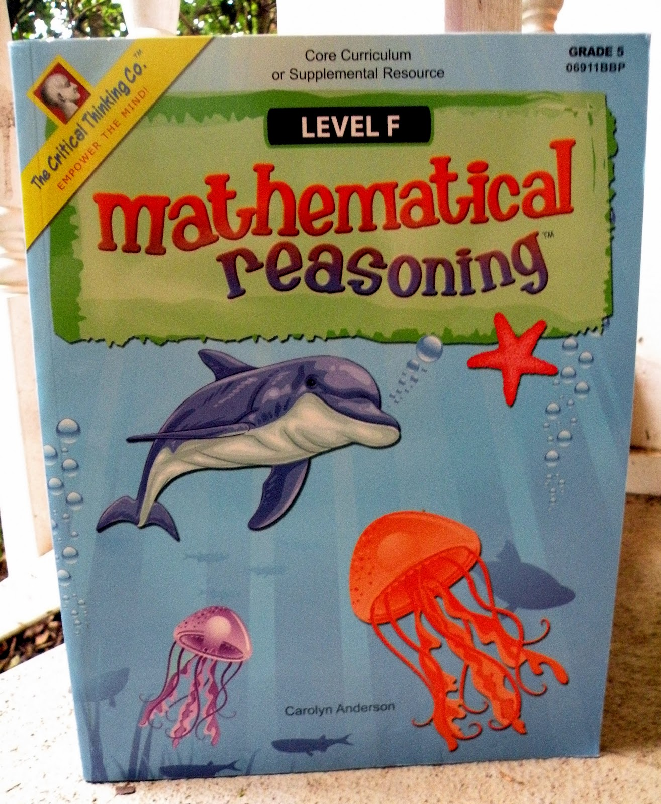critical thinking company mathematical reasoning I discovered the mathematical reasoning curriculum over a year ago the critical thinking math curriculum covers all areas of math with colorful, varied, and interesting pages 2nd.