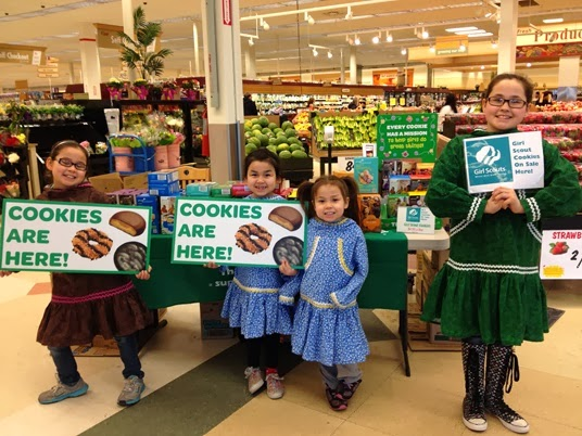 girl scouts of alaska gearing up for the 2014 girl scout
