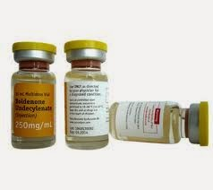 boldenone in humans