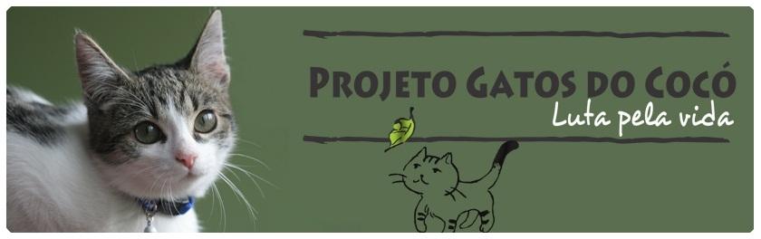 Saiba mais sobre: Gatos