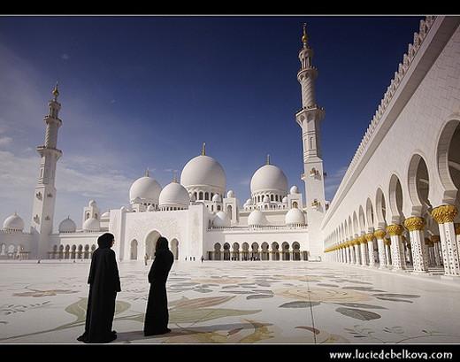 11. Sheikh Zayed Grand Mosque (Dubai City)