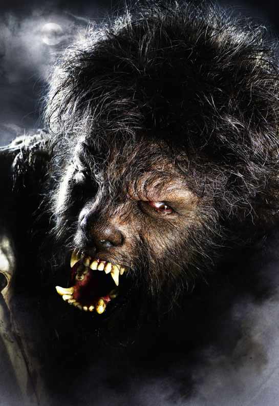 """The Wolfman"" Get's The Hollywood Reboot!"