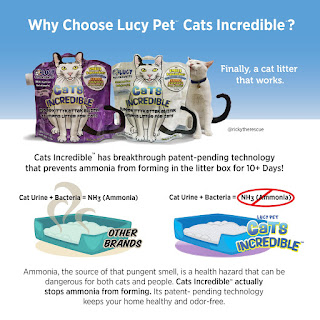 Hands down the BEST cat litter ever