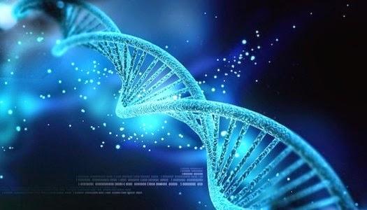 Almacenan ADN de todos los seres vivos de la Tierra