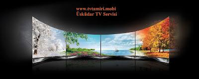 İstanbul Uskudar TV Servisi