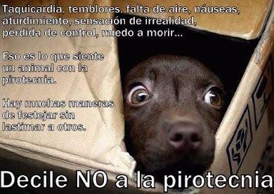 NO A LA PIROTECNIA!!!