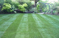 turfing, returfing, new lawn, new grass, dorking, crawley, horsham