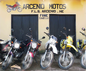 F.L.S. Arcnio Moto