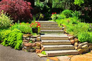 Escalera en jardines con plantas y flores