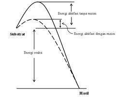 Bionomipa: Indikator 24: Ciri‐ciri dan Cara Kerja Faktor ...