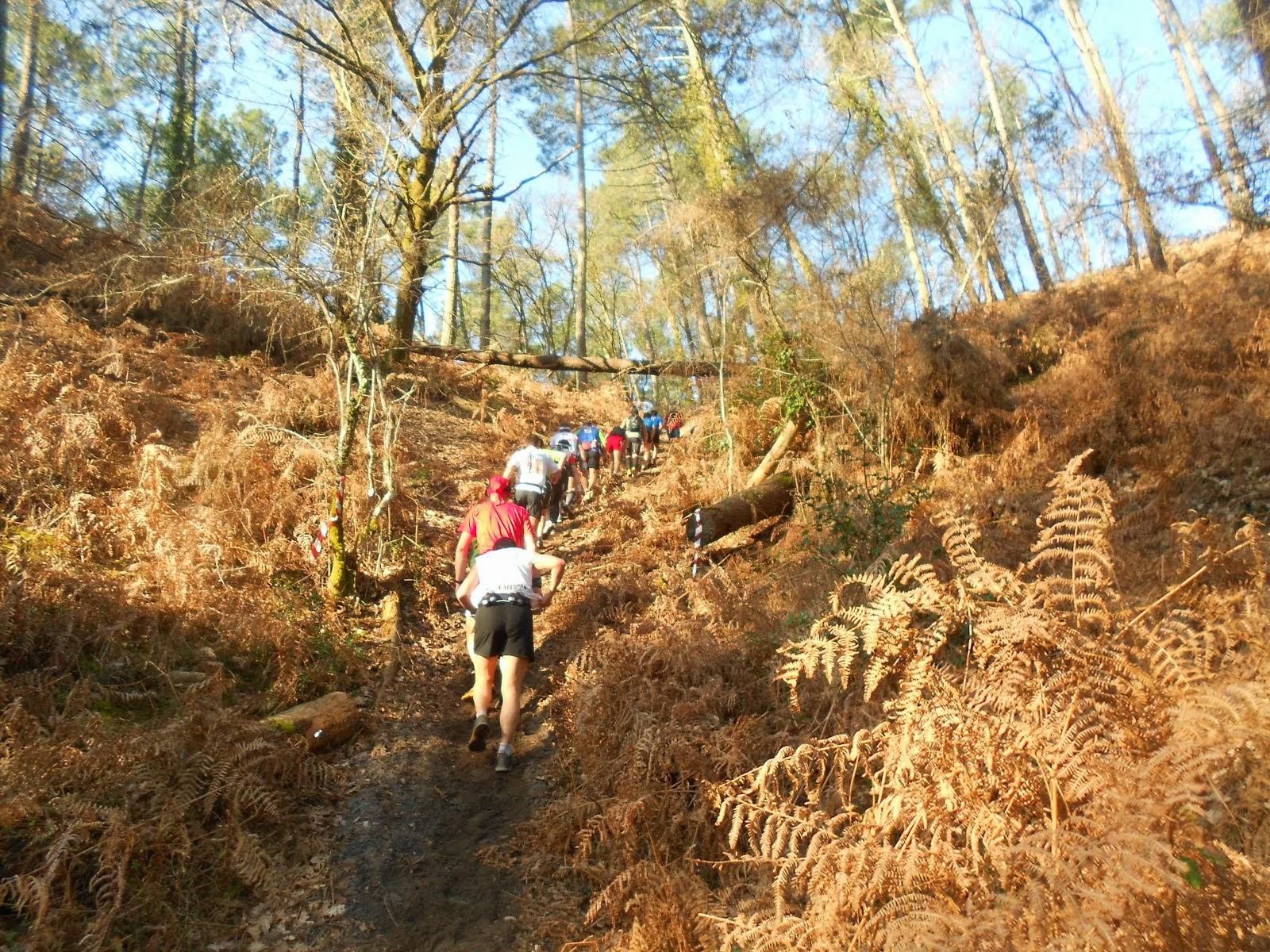 Trail du Marensin 2012