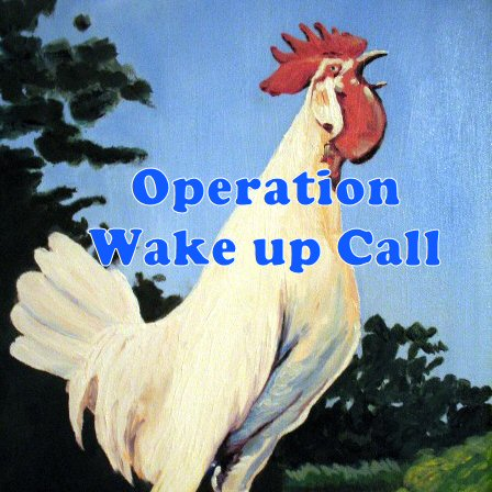 wake up