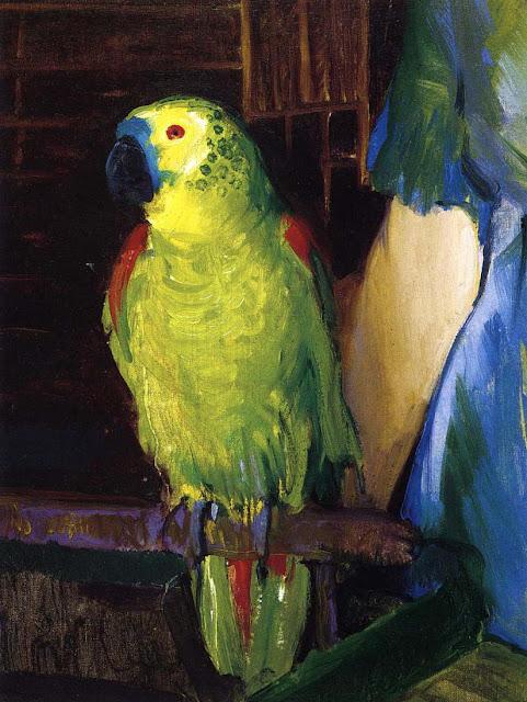 1915 Parrot oil