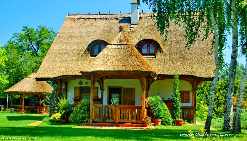 Wonderful houses in the green nature interior design for Nature home photos