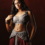 Karthika Hot and Spicy Wet Stills form Apsaras Movie