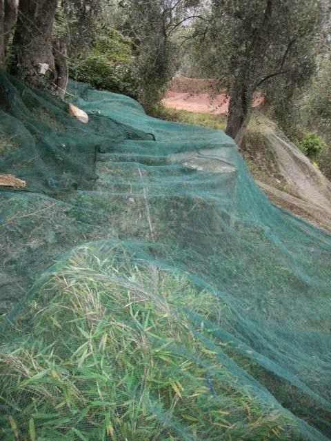 Die Netze sind ausgelegt