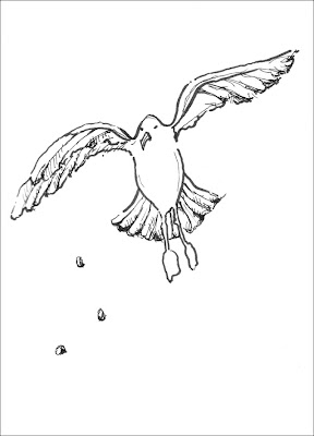 drawing of a seagull catching food tossed in the air