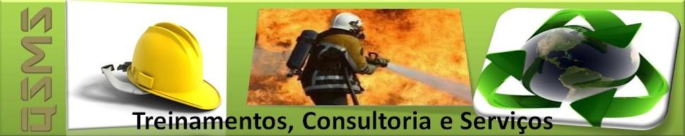 QSMS Treinamentos, Consultoria e Serviços