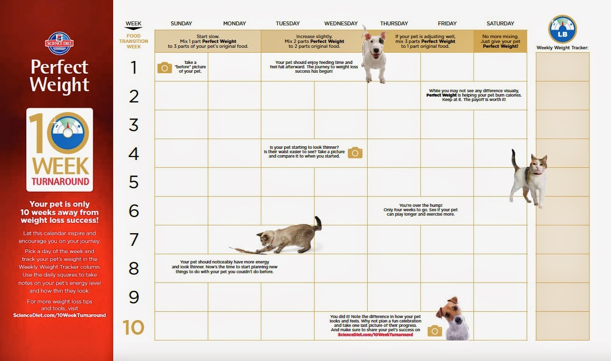 calendar for science diet perfect weight dog food