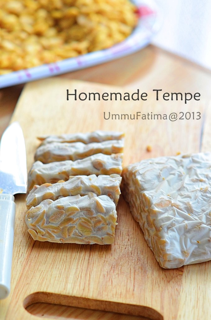 homemade tempeh
