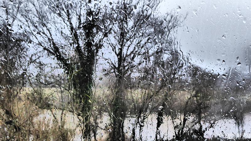 Panasonic TZ70, foto di esempio. Pioggia sui vetri