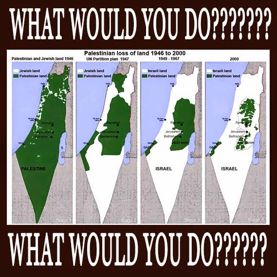 PALESTINE. WHAT WOULD YOU DO?