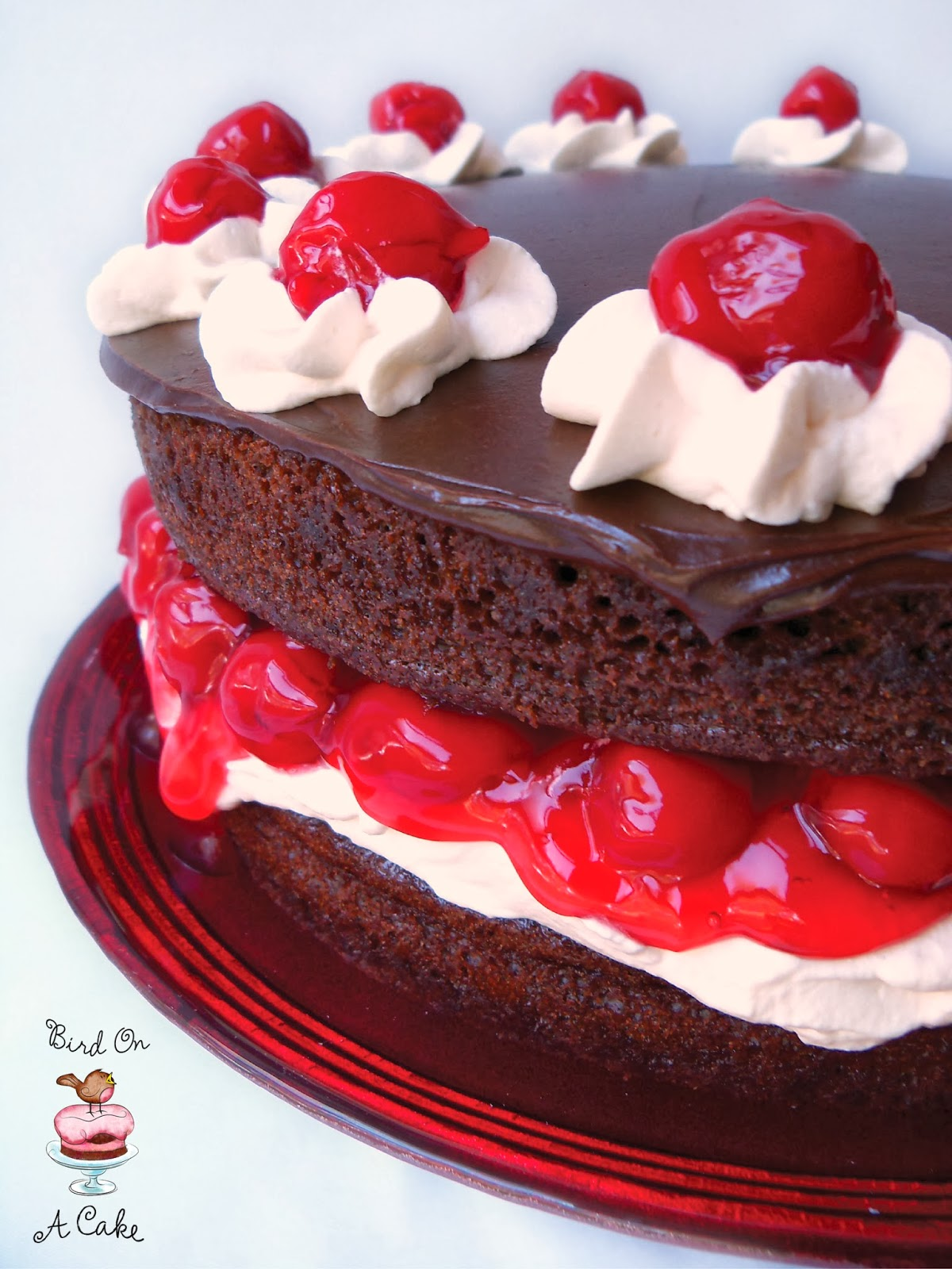 Bird On A Cake: Black Forest Cake with Chocolate Ganache