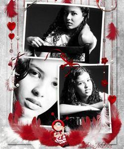 Moldura e fotos colagem com penas vermelhas