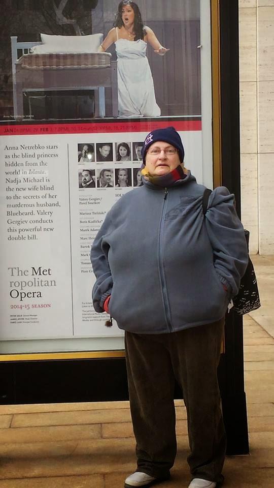 the Met poster