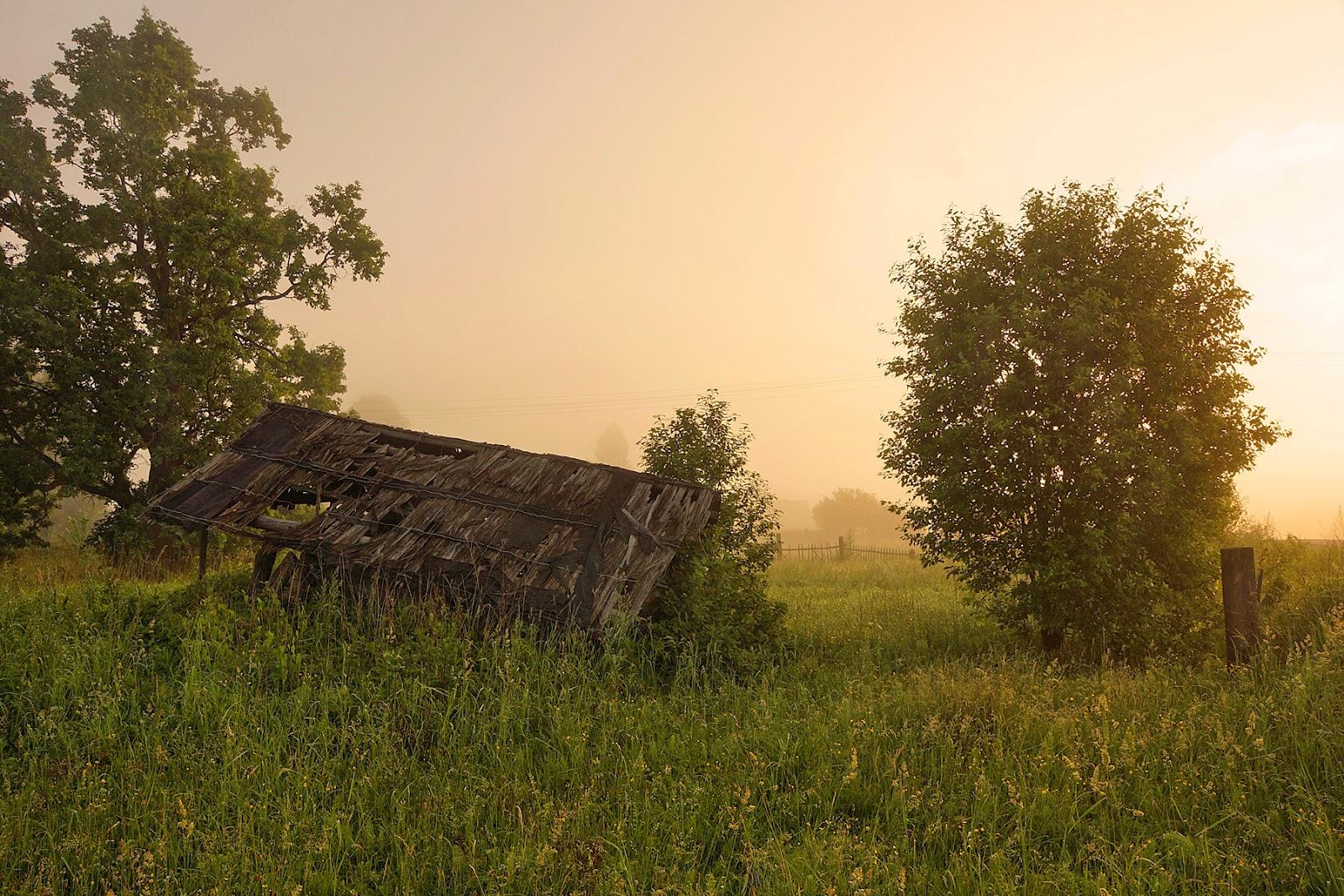 Картинки природа псковского края