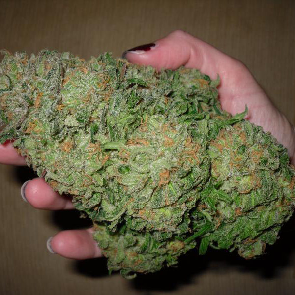 how to buy good weed online