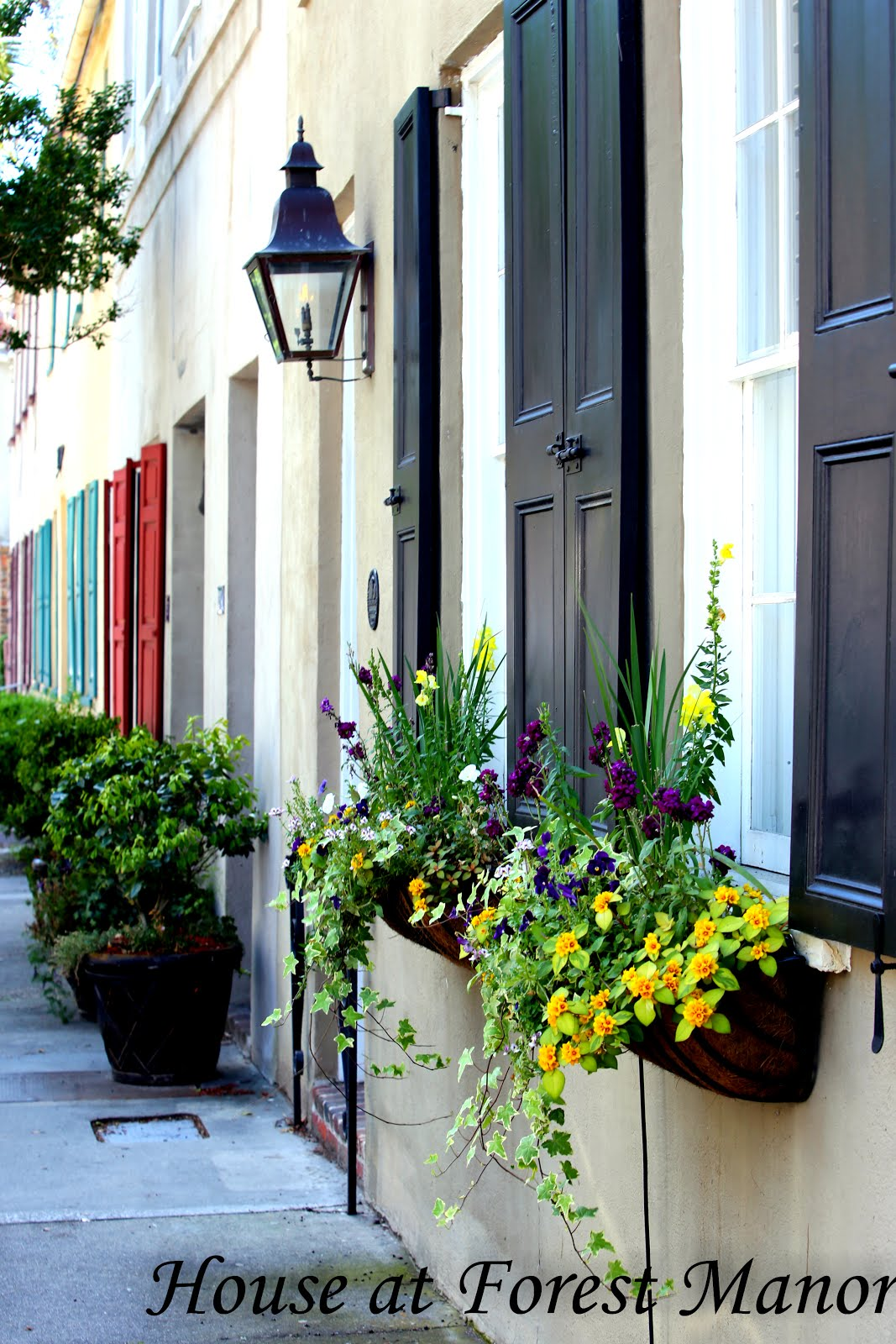 Charleston French Quarter