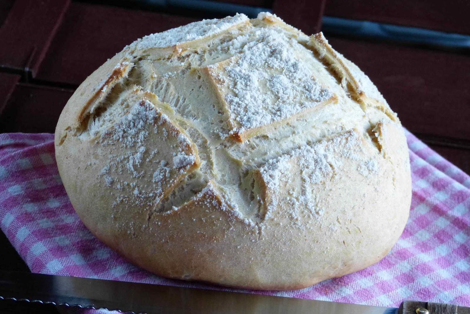 Pan para principiantes