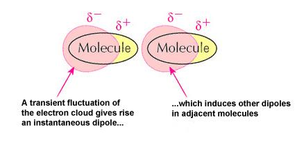 Formation of Van der Waals interactions