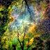 Keperluan Merawat diri yang dikelilingi aura negatif