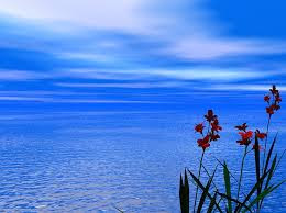 Kumpulan Puisi Tentang Laut Dan Isinya