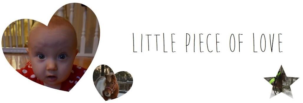 Little Piece of Love