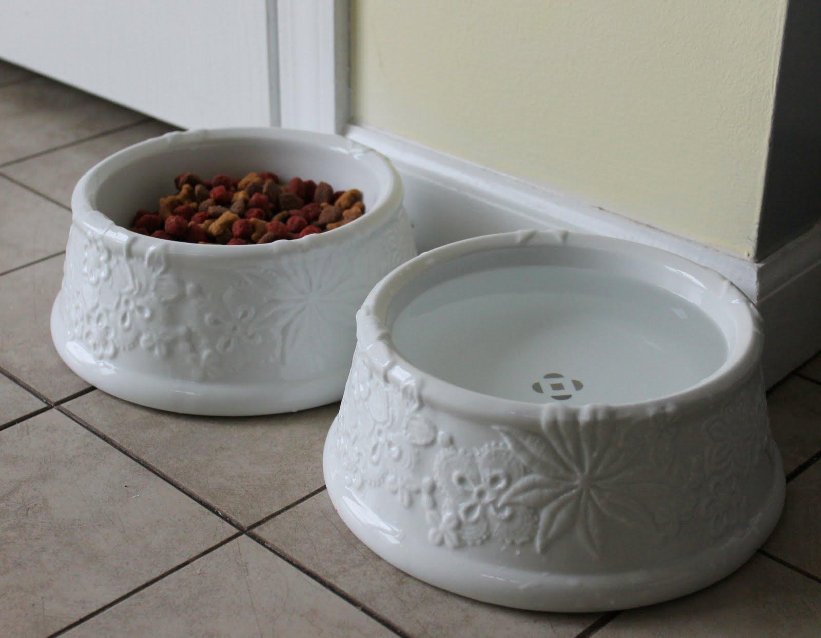 Uncategorized Cute Dog Bowl hems and haws the cadillac of dog bowls